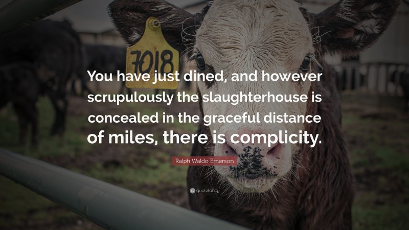 """Ralph Waldo Emerson Quote: """"You have just dined, and however scrupulously the slaughterhouse is concealed in the graceful distance of miles, there is complicity."""""""