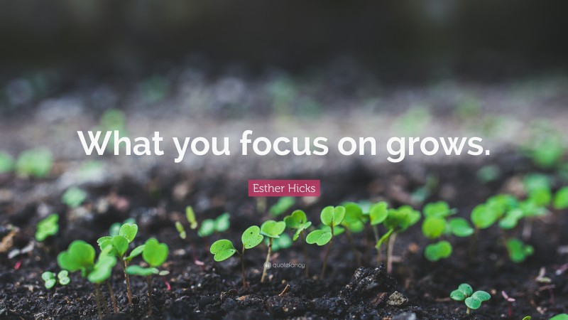 """Esther Hicks Quote: """"What you focus on grows."""""""