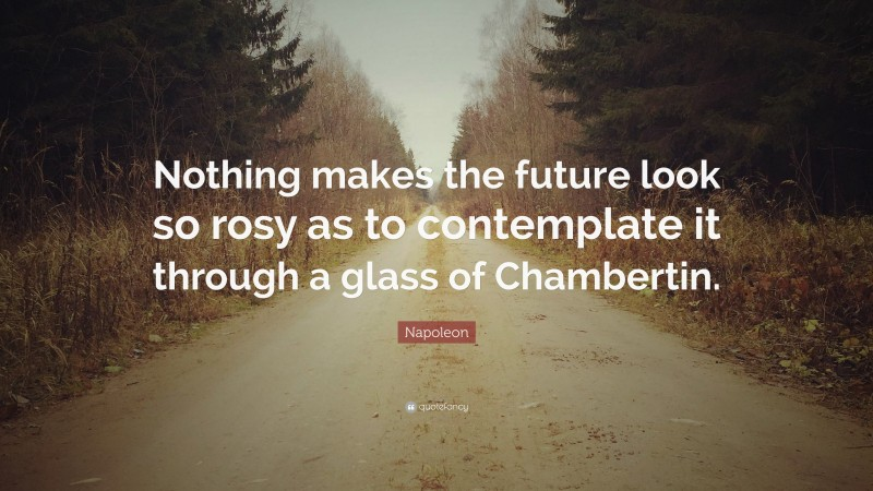 """Napoleon Quote: """"Nothing makes the future look so rosy as to contemplate it through a glass of Chambertin."""""""
