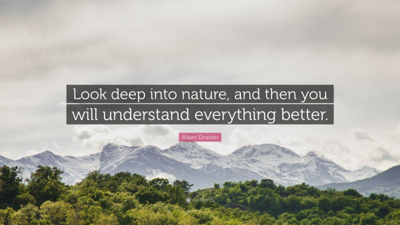 """Albert Einstein Quote: """"Look deep into nature, and then you will understand everything better."""""""