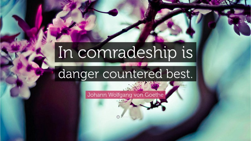 """Johann Wolfgang von Goethe Quote: """"In comradeship is danger countered best."""""""