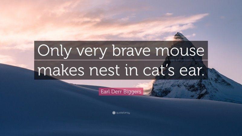 """Earl Derr Biggers Quote: """"Only very brave mouse makes nest in cat's ear."""""""