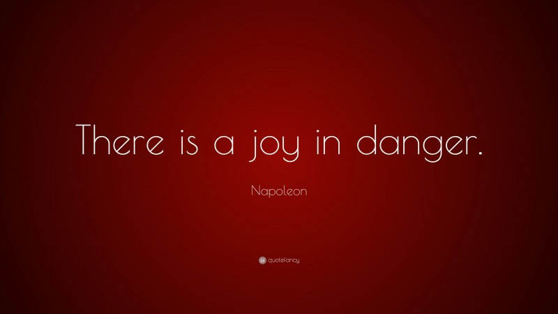 """Napoleon Quote: """"There is a joy in danger."""""""