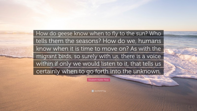"""Elisabeth Kübler-Ross Quote: """"How do geese know when to fly to the sun? Who tells them the seasons? How do we, humans know when it is time to move on? As with the migrant birds, so surely with us, there is a voice within if only we would listen to it, that tells us certainly when to go forth into the unknown."""""""