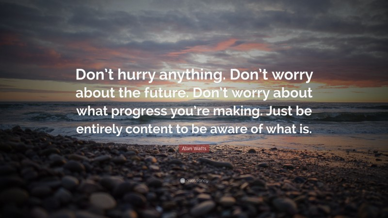"""Alan Watts Quote: """"Don't hurry anything. Don't worry about the future. Don't worry about what progress you're making. Just be entirely content to be aware of what is."""""""