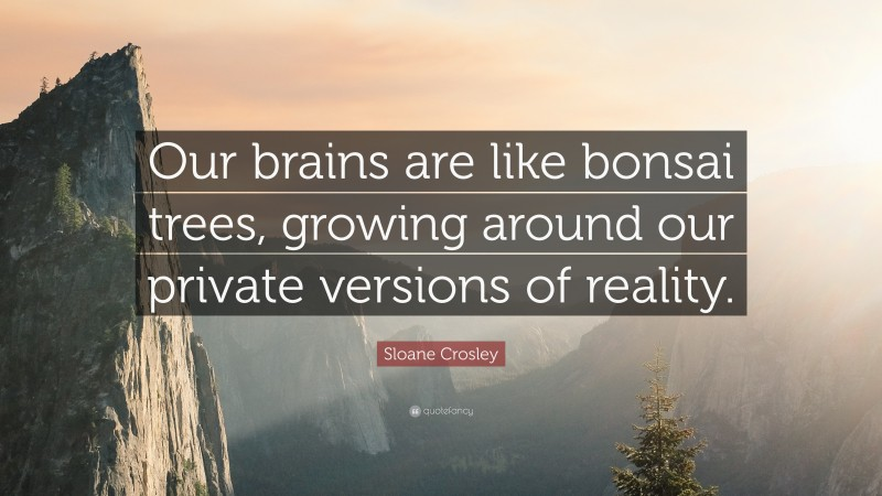 """Sloane Crosley Quote: """"Our brains are like bonsai trees, growing around our private versions of reality."""""""