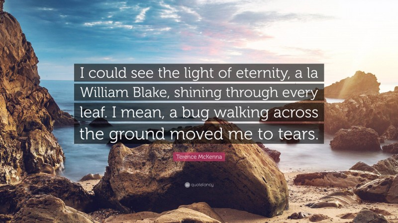 """Terence McKenna Quote: """"I could see the light of eternity, a la William Blake, shining through every leaf. I mean, a bug walking across the ground moved me to tears."""""""