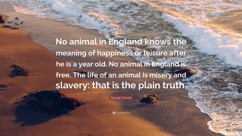 """George Orwell Quote: """"No animal in England knows the meaning of happiness or leisure after he is a year old. No animal in England is free. The life of an animal is misery and slavery: that is the plain truth."""""""