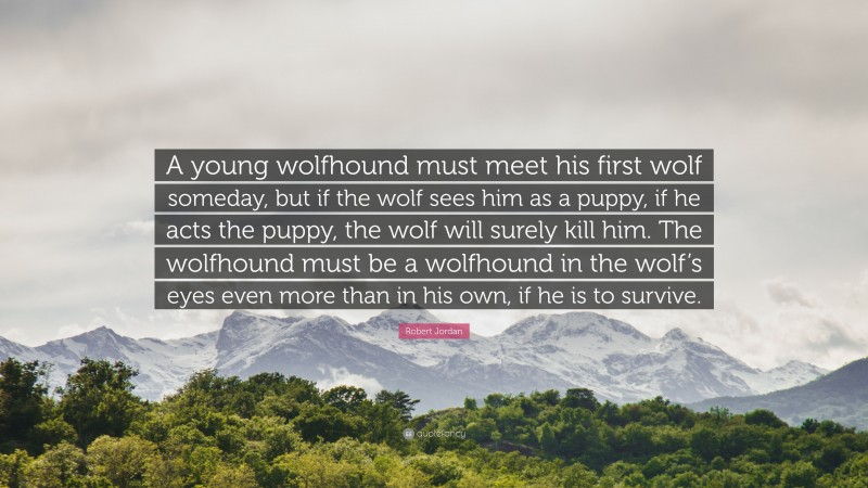"""Robert Jordan Quote: """"A young wolfhound must meet his first wolf someday, but if the wolf sees him as a puppy, if he acts the puppy, the wolf will surely kill him. The wolfhound must be a wolfhound in the wolf's eyes even more than in his own, if he is to survive."""""""
