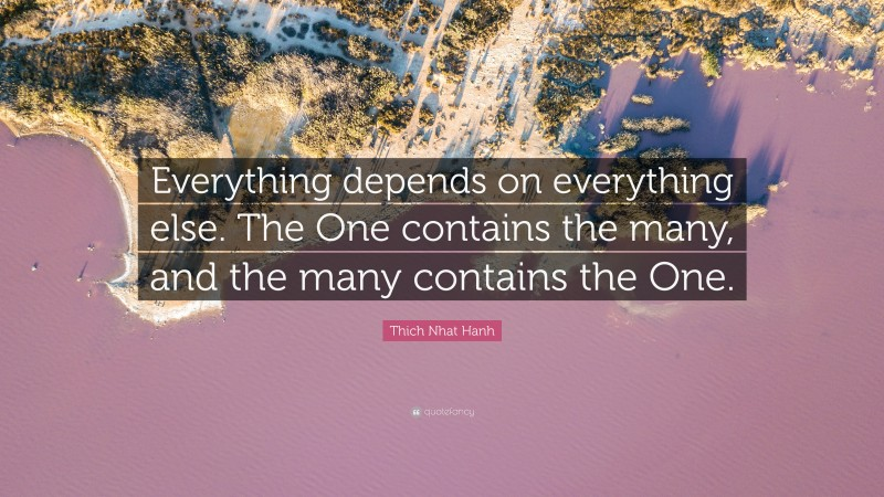 """Thich Nhat Hanh Quote: """"Everything depends on everything else. The One contains the many, and the many contains the One."""""""