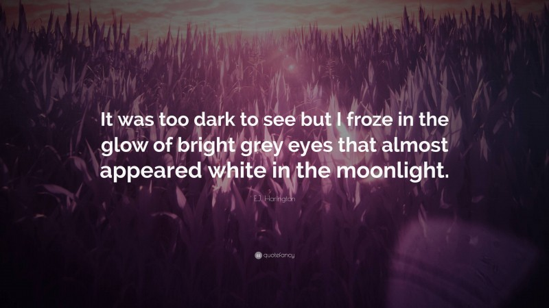 """E.J. Harington Quote: """"It was too dark to see but I froze in the glow of bright grey eyes that almost appeared white in the moonlight."""""""