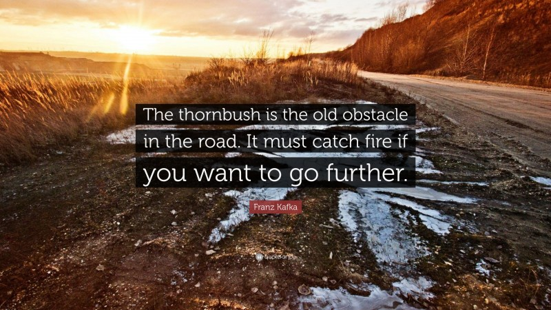 """Franz Kafka Quote: """"The thornbush is the old obstacle in the road. It must catch fire if you want to go further."""""""