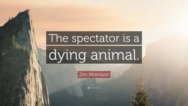 """Jim Morrison Quote: """"The spectator is a dying animal."""""""